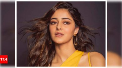 Ananya Panday opens up about receiving mean comments on social media, reacts to being called 'struggling didi' - Times of India