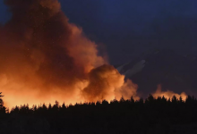 California Wildfires: 'We lost Greenville': Wildfire decimates California town | World News - Times of India