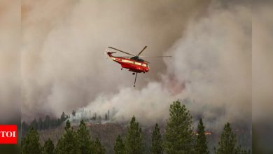 California urges people to flee communities in Dixie fire path - Times of India