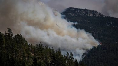 A helicopter carrying a water bucket flies past the Lytton Creek wildfire burning in the mountains near Lytton, British Columbia, on Sunday, Aug. 15, 2021. (Darryl Dyck/The Canadian Press via AP)