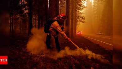 Dixie Fire becomes third-largest in California history - Times of India