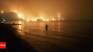 Greek wildfires: New blaze breaks out on Evia island - Times of India