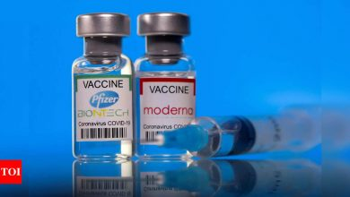 Pfizer and Moderna raise prices for Covid-19 vaccines in European Union - Times of India