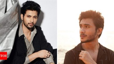 Rohit Saraf to Ritwik Bhowmik: A look at young and upcoming OTT stars - Times of India