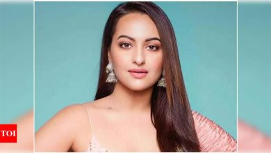 Sonakshi Sinha responds to a fan's marriage proposal on Instagram - Times of India