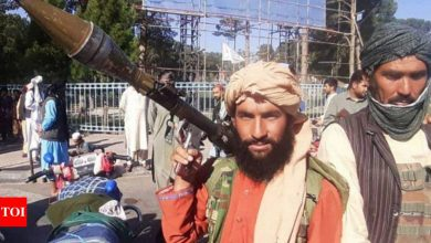 Taliban forcing women to marry terrorists - Times of India