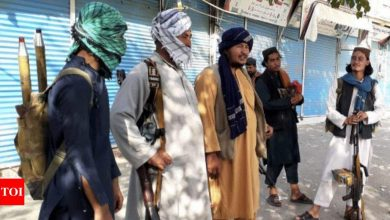 Taliban releases over 1,000 criminals, drug traffickers from prisons after capturing key cities - Times of India