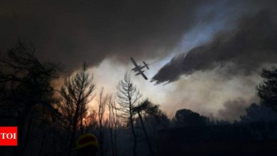 Thousands more flee fires outside Athens amid heat wave - Times of India