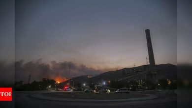 Turkey president Erdogan faces mounting criticism over wildfires - Times of India