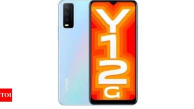 Vivo Y12G budget phone launched with Snapdragon 439 and dual rear camera - Times of India