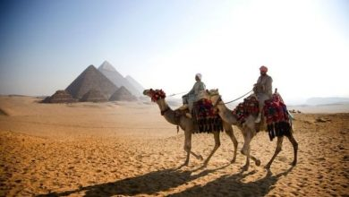 When will Egypt move to the amber list?