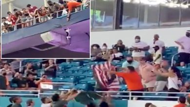 Feline fine: Fans at Miami-App State game save falling cat with American flag