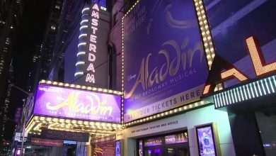 A Day After Reopening, 'Aladdin' on Broadway Halted by COVID Cases