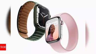 Apple introduces new Watch Bands in India - Times of India