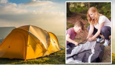 Back garden camping: Curiosity and private land with 'amenities better than campsites'