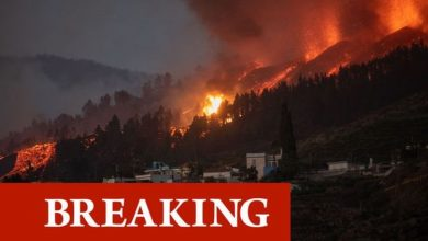 Canary Islands tourist warning: More than 5,000 people evacuated after volcano eruption