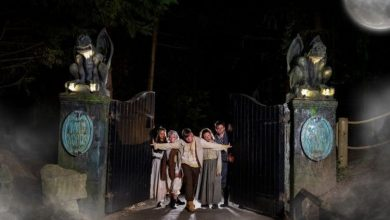 Chessington World of Adventures launches Howl'o'ween event – how to book tickets