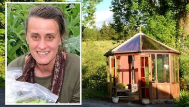 Eco-retreat in Wales bans vaccinated visitors – 'absolute lunacy'