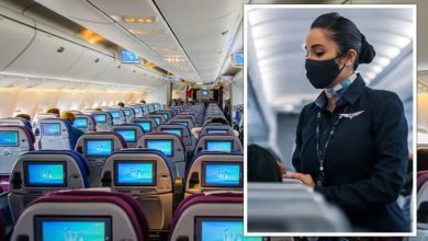 Flight attendant shares what passengers should never do during Covid -  'never cleaned!'