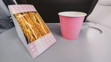 Passengers can get discounted sandwiches on final flight - but there's a catch