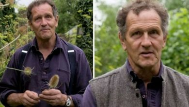 'That's the end of them' Monty Don inundated with support as he posts 'devastating' update