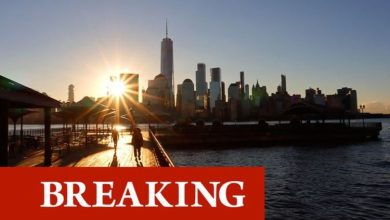 UK-US travel ban lifted: Britons will be able to travel to US from November - 'finally!'
