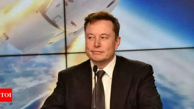 Why Elon Musk is talking about the hare and tortoise story - Times of India